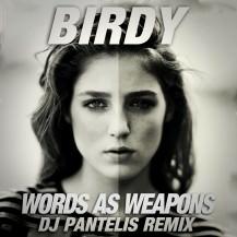 Birdy - Words As Weapons (DJ Pantelis Remix)