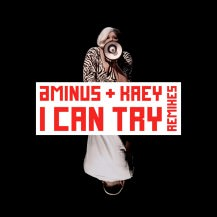 Aminus feat. Kaey - I Can Try (Theatre Of Delays Remix)