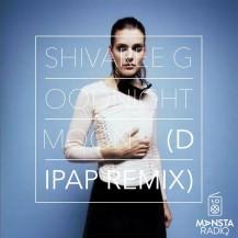 Shivaree - Goodnight Moon (DiPap Edit)